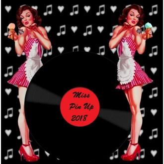 MISS PIN-UP VSTUPENKY - Vstupenka na Miss Pin-Up 2018
